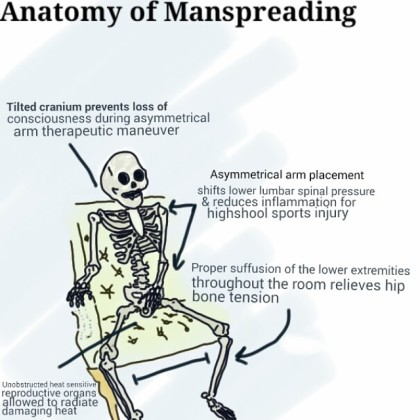 The Anatomy of Manspreading